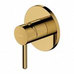 Potinkinis auksinis maišytuvas dušui